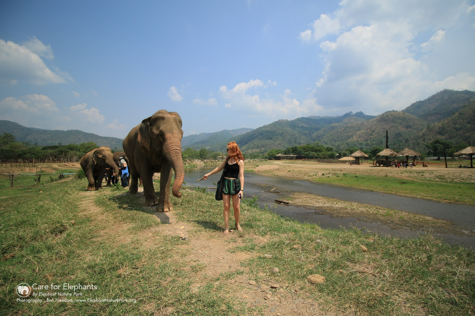chiang mai thailand travel blogger elephant sanctuary elephant volunteering volunteer